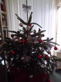 christbaum15
